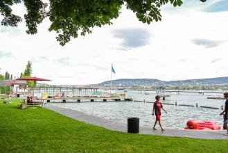 Hinten erahnt man Zürich.