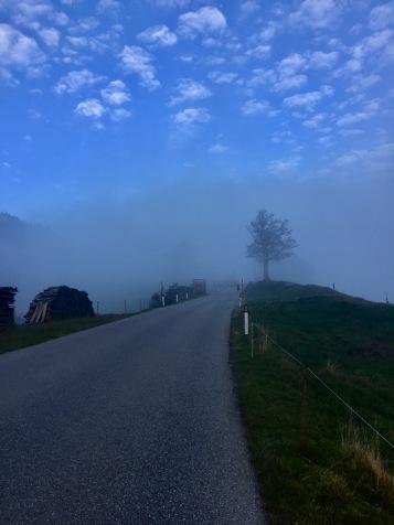 Beim Runterrollen kam der Nebel.